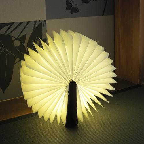Lumiosf ルミオエスエフ/充電式LEDライト